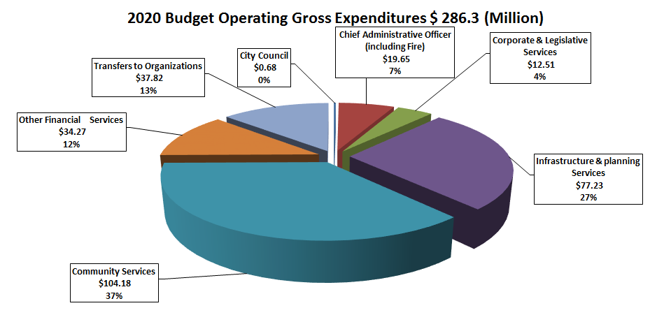 Chart of 2020 Budget operating expenditures