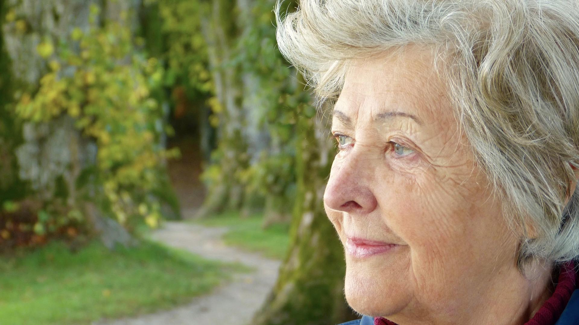 Image of an older adult looking out across a park.