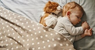 Image of a child snuggled with a sleeping dog under a blanket.